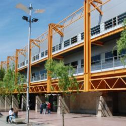 Bibliotecas de la Universidad de Salamanca